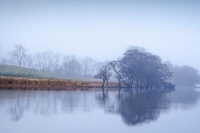 Autumn Haze, Loch Eck by Lynne Douglas