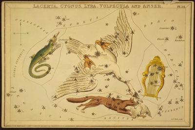 https://imgc.allpostersimages.com/img/posters/lyra-cygnus-lacerta-and-vulpecula-1825_u-L-PYYNTE0.jpg?artPerspective=n
