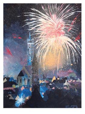 Landshut Bavaria Fireworks by M Bleichner