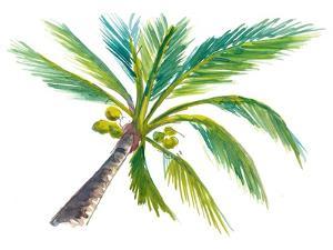 Tropical Palm Leaf by M. Bleichner