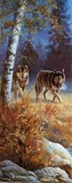 Moonlit Wolves by M. Caroselli