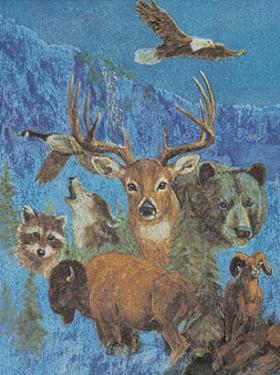 Wild Life Montage by M. Caroselli