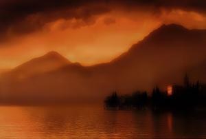 Golden Glow by M. Ellen Cocose