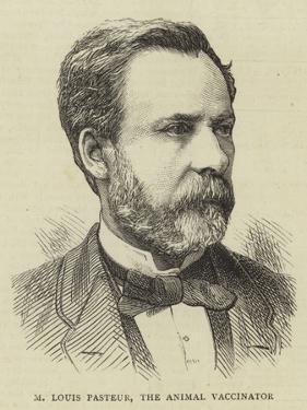 M Louis Pasteur, the Animal Vaccinator
