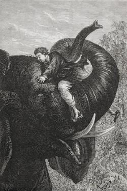 Passepartout Sitting On the Trunk Of an Elephant. 'Around the World in Eighty Days' Illustration by M.M. De Neuville