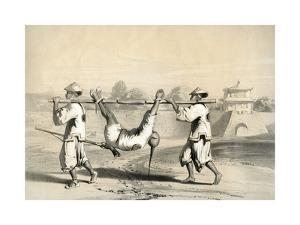 Sketch from the Wall on the Morning after the Grand Attack, China, 19th Century by M & N Hanhart
