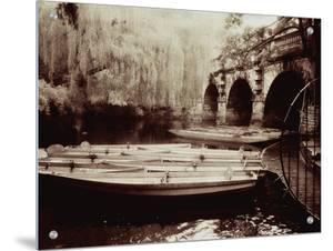 Punting Boats, Weeping Willow, Bridge, Oxford, Uk by M.N.