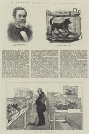 https://imgc.allpostersimages.com/img/posters/m-pasteur-s-experiments-on-hydrophobia_u-L-PVWLV40.jpg?p=0