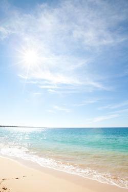 Maui Beach by M Swiet Productions