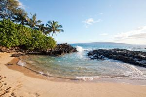 Tropical Beach by M Swiet Productions