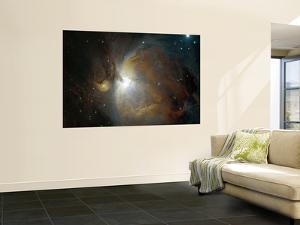 M42 Nebula in Orion