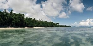 A Beach Near the 180th Meridian on Taveuni by Macduff Everton