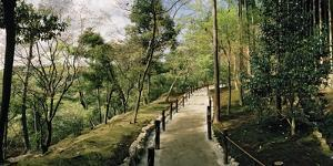 A Garden Path on a Hillside at Ryoanji Garden by Macduff Everton