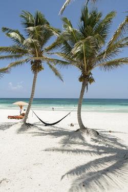 A Hammock Awaits Between Palm Trees on a White Sand Beach by Macduff Everton