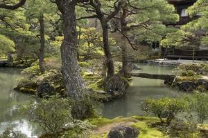 A Japanese Garden with Pond and the Silver Pavilion in the Background, at Ginkaku-Ji by Macduff Everton