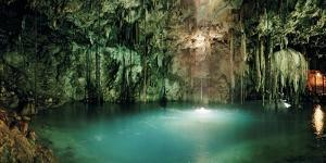 A Shaft of Morning Sunlight Entering Xkeken, a Natural Well or Cenote at Dzitnup by Macduff Everton
