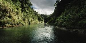 A Tropical Canyon Containing the Upper Navua River by Macduff Everton