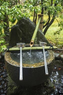 A Water Basin Carved from Stone with Bamboo Water Supply Pipe and Ladles, at Koinzan Saihoji by Macduff Everton