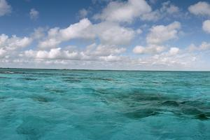 China Point Reef Off Andros Island by Macduff Everton