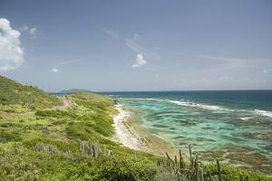 Countryside and Ocean on St. Croix by Macduff Everton
