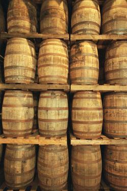 Empty Whiskey Casks in Storage by Macduff Everton
