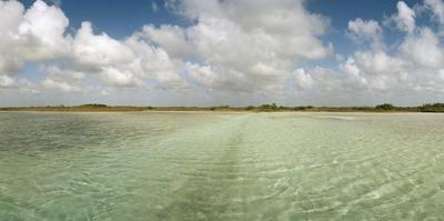 The Crystal Clear Water of an Ancient Maya Canal in Sian Ka'An Biosphere Reserve by Macduff Everton