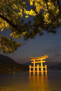 The 'Floating' Torii Gate of the Itsukushima Shinto Shrine, Illuminated at High Tide by Macduff Everton