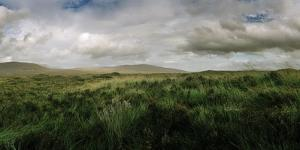 The Rolling Moorland of the Scottish Highlands by Macduff Everton