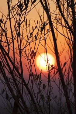 The Sun Sets in San Miguel De Allende by Macduff Everton