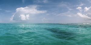 The Waters Off Isla Contoy National Park, Off the Northeast Tip of the Yucatan Peninsula by Macduff Everton