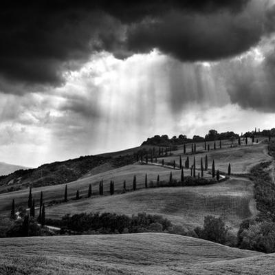 Hills of Tuscany by Maciej Duczynski