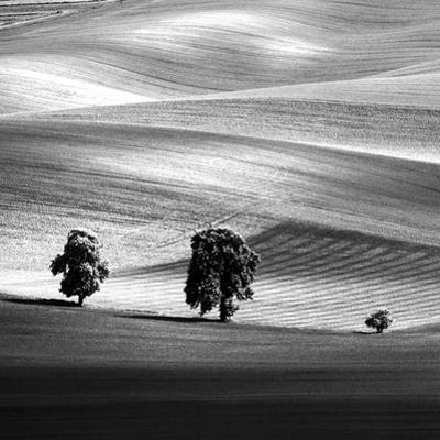 Moravia by Maciej Duczynski