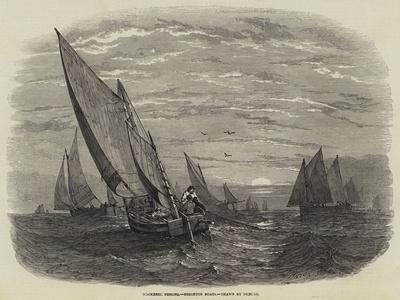 https://imgc.allpostersimages.com/img/posters/mackerel-fishing-brighton-boats_u-L-PVMFY50.jpg?p=0