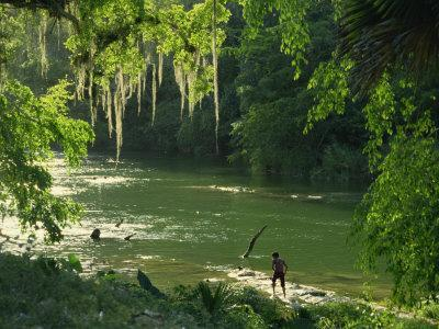 Macac River Running Through Rainforest at Old Man's Beard, Belize, Central America