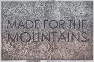 Made for the Mountains - 1894, Colorado State Map in Relief, Colorado, United States Map