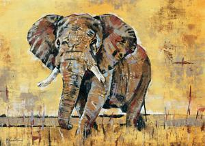 Safari Elephant by Madelaine Morris