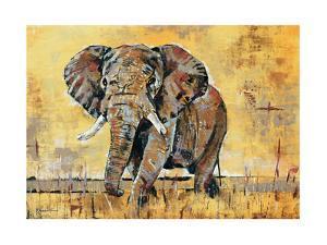 Safari Elephant by Madelaine Morris