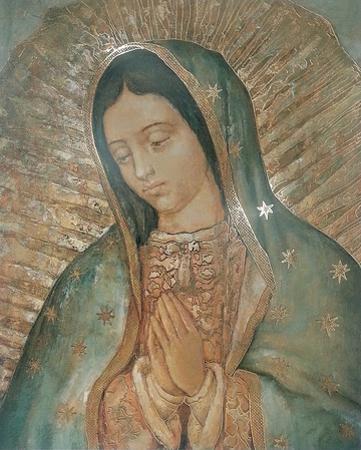 Madonna Di Guadalupe