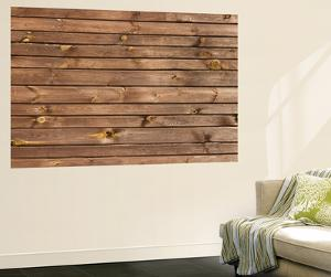 Brown Painted Wood Wall - Texture or Background by Madredus