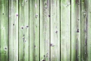 The Old Green Wood Texture with Natural Patterns by Madredus