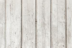 The White Paint Wood Texture with Natural Patterns by Madredus