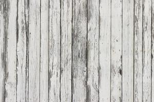 The White Wood Texture with Natural Patterns Background by Madredus