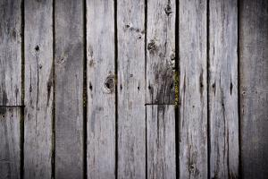 The Wood Texture with Natural Background by Madredus