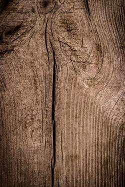 The Wood Texture with Natural Patterns by Madredus