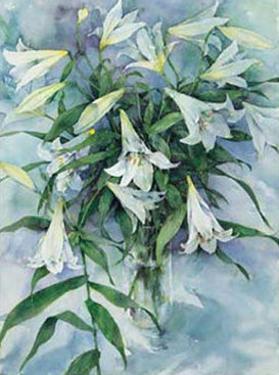 White Lilies by Mae Book