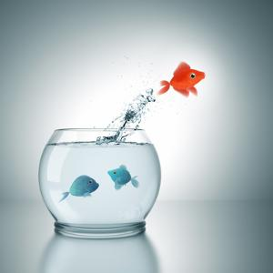 A Fishbowl With A Red Fish Jumping Out Of The Water by magann