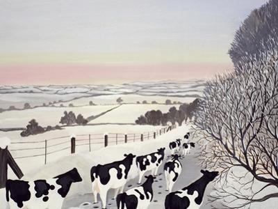 Friesians in Winter