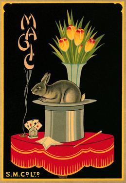 Magic, Tulips, Rabbit, Hat