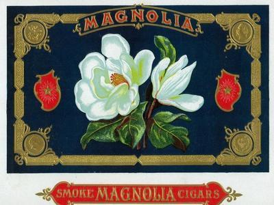 https://imgc.allpostersimages.com/img/posters/magnolia-brand-cigar-box-label_u-L-Q1GOHXU0.jpg?artPerspective=n