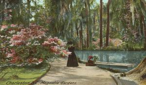 Magnolia Gardens, Charleston, South Carolina
